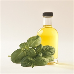 Picture of SWEET BASIL OLIVE OIL